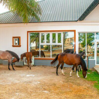 Tourism: Ife Grand Resort & Leisure: Luxury at Its Best